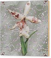 Penny Postcard Exotica Wood Print