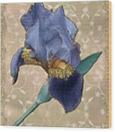 Penny Postcard Florentine Wood Print