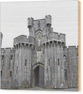Penrhyn Castle 3 Wood Print