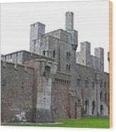 Penrhyn Castle 5 Wood Print