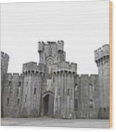 Penrhyn Castle Wood Print
