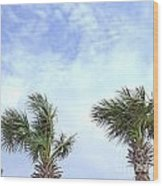 Pensacola Palms Wood Print