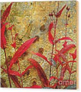 Penstemon Abstract 4 Wood Print