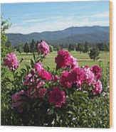 Peonies Please Wood Print