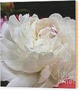 Peony Addiction Wood Print