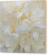 Peony Close-up In Pale Wood Print