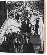 People Crossing The Hapenny Ha Penny Bridge Over The River Liffey In Dublin At A Busy Time Vertical Wood Print