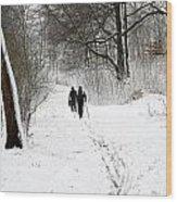 People On Ski  In Snowy Landscape Wood Print