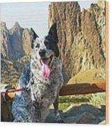Pepper At Smith Rock Wood Print