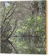 Pepper Creek II Wood Print