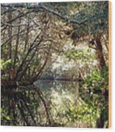 Pepper Creek Wood Print