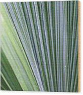 Perfect Leaf Wood Print