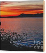 Perfect Marine Sunset Wood Print