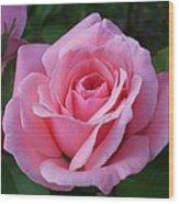 Perfect Rose Wood Print
