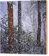 Perfect Storm Wood Print