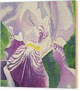 Perfectly Purple Wood Print