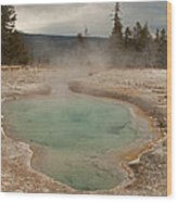 Perforated Pool In West Thumb Geyser Basin Wood Print