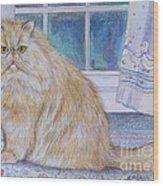 Persian Cat In Kitchen Wood Print