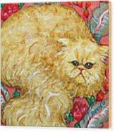 Persian Cat On A Cushion Wood Print