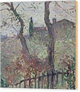 Perugia  Umbria Wood Print