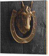 Peruvian Door Decor 5 Wood Print