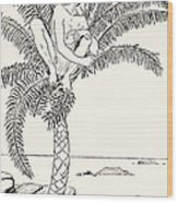 Pestonjee Bomonjee Sitting In His Palm-tree And Watching The Rhinoceros Strorks Bathing Wood Print