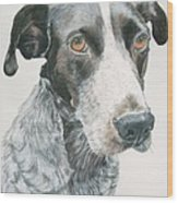 Pet Portrait Dog Art Print Hire Commission Pet Portrait Artist Wood Print