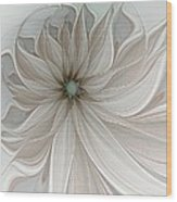 Petal Soft White Wood Print
