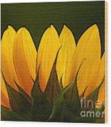 Petales De Soleil - A01 Wood Print