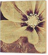 Petaline - T37d03a3 Wood Print