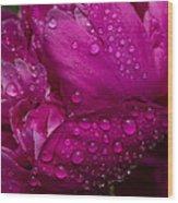 Petals And Drops I Wood Print