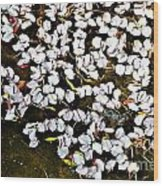 Petals In The Pond Wood Print