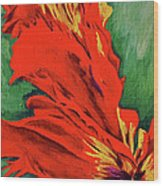 Petals Of Fire Two Wood Print
