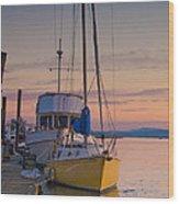 Petaluma River II Wood Print