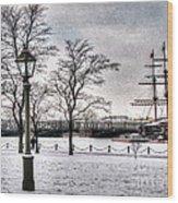 Peterburg Winter Wood Print