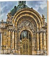 Petit Palais - Paris France Wood Print
