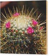Petite Cactus Wood Print