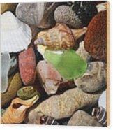 Petoskey Stones L Wood Print by Michelle Calkins