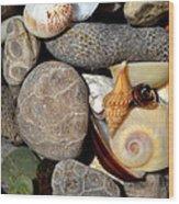 Petoskey Stones Ll Wood Print
