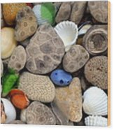 Petoskey Stones Lll Wood Print
