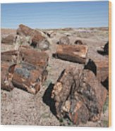 Petrified Forest Wood Print