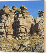 Petrified Forest Rock Formations Wood Print