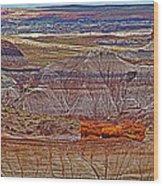 Petrified Log On Overlook Near Blue Mesa In Petrified Forest National Park-arizona   Wood Print