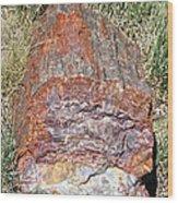 Petrified Stump Wood Print