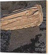 Petrified Wood On A Pedestal Wood Print