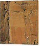 Petroglyphs   #1054 Wood Print
