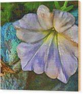 Petunia  Wood Print