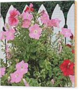 Petunia Picket Fence Wood Print
