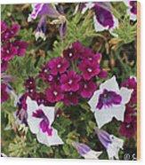 Petunias And Verbena I Wood Print
