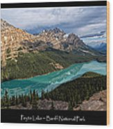 Peyto Lake Poster Wood Print